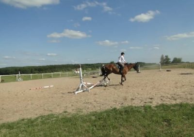 oboz-konie-2013-7-0068
