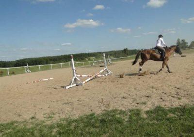oboz-konie-2013-7-0070