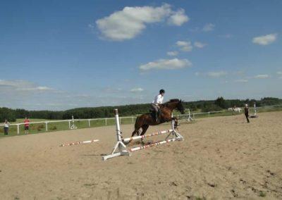 oboz-konie-2013-7-0073