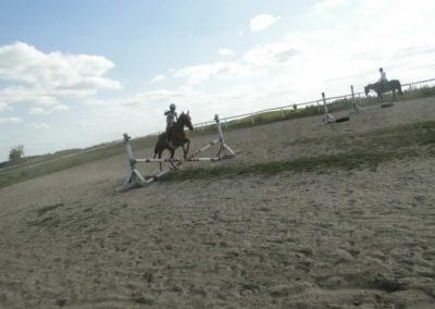 oboz-konie-2013-7-0076