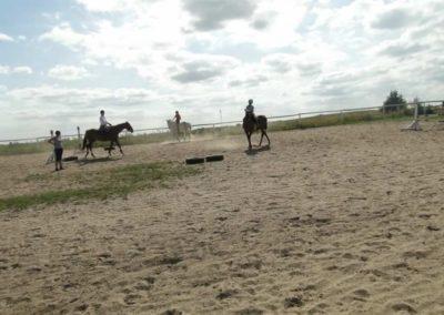 oboz-konie-2013-7-0078