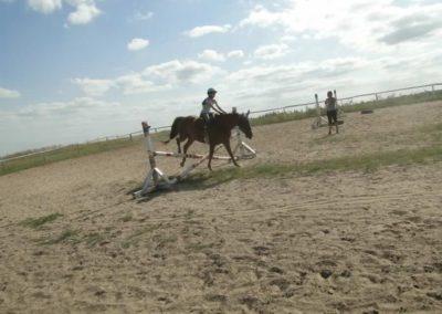 oboz-konie-2013-7-0079