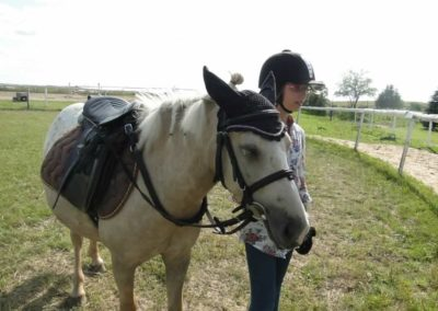 oboz-konie-2013-7-0085