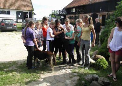 oboz-konie-2013-7-0100