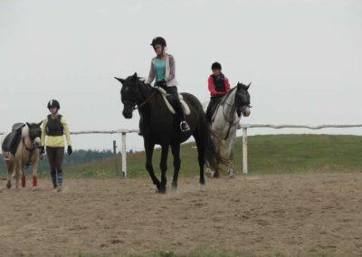 oboz-konie-2014-1-0004