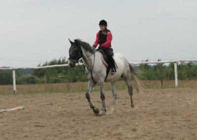 oboz-konie-2014-1-0007
