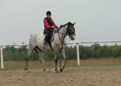 oboz-konie-2014-1-0010