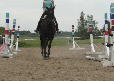 oboz-konie-2014-1-0025