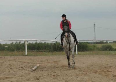 oboz-konie-2014-1-0036