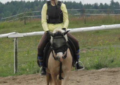 oboz-konie-2014-1-0060