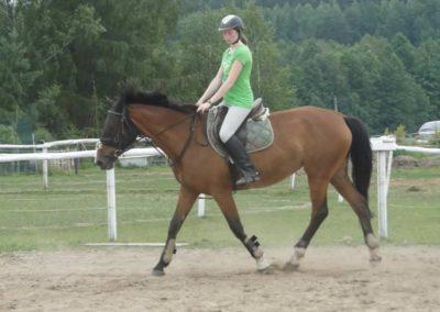 oboz-konie-2014-1-0065
