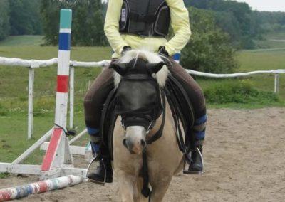 oboz-konie-2014-1-0071