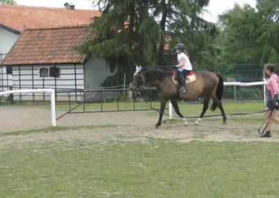 oboz-konie-2014-1-0080
