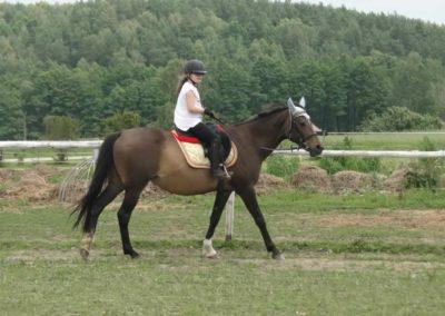 oboz-konie-2014-1-0083