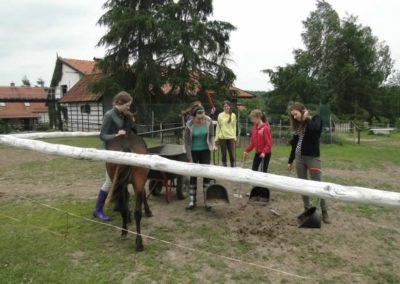 oboz-konie-2014-1-0089