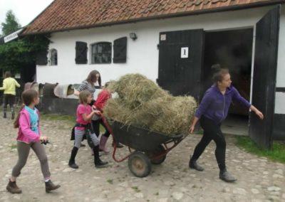 oboz-konie-2014-1-0102