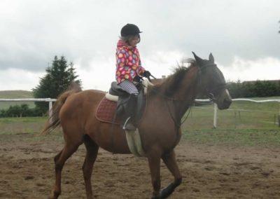 oboz-konie-2014-2-0008