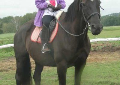 oboz-konie-2014-2-0009