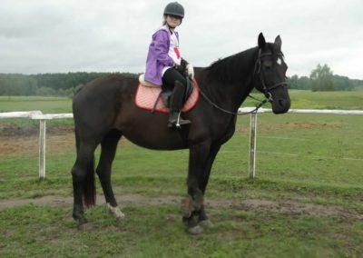 oboz-konie-2014-2-0010
