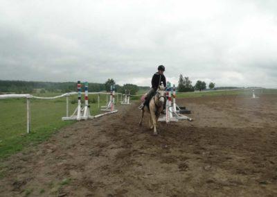 oboz-konie-2014-2-0015