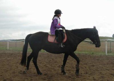 oboz-konie-2014-2-0017
