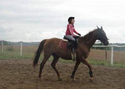 oboz-konie-2014-2-0019