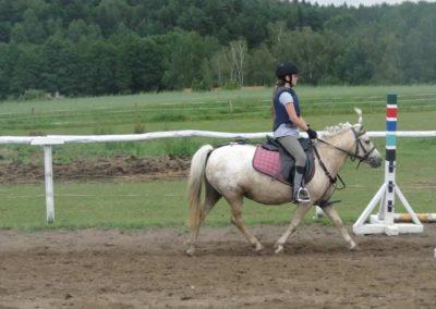 oboz-konie-2014-2-0020