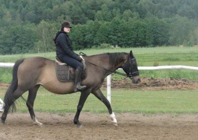 oboz-konie-2014-2-0021