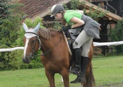 oboz-konie-2014-2-0023