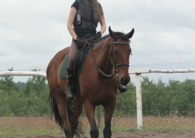 oboz-konie-2014-2-0025