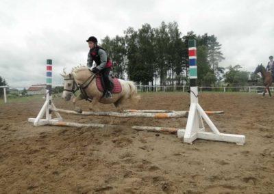 oboz-konie-2014-2-0030
