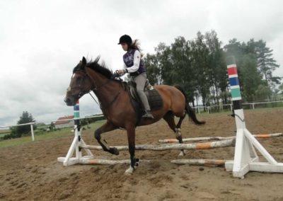 oboz-konie-2014-2-0032