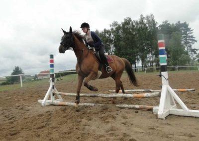 oboz-konie-2014-2-0033
