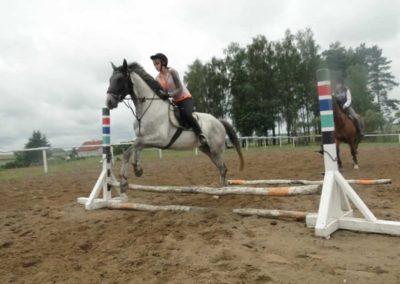 oboz-konie-2014-2-0035