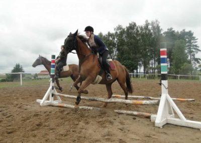 oboz-konie-2014-2-0037