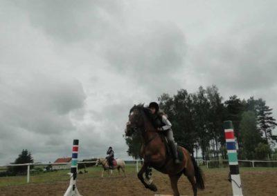 oboz-konie-2014-2-0038