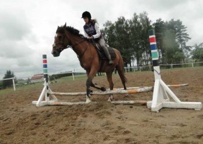 oboz-konie-2014-2-0039