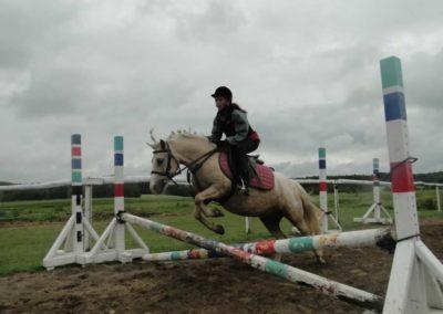 oboz-konie-2014-2-0040