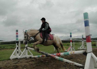 oboz-konie-2014-2-0041