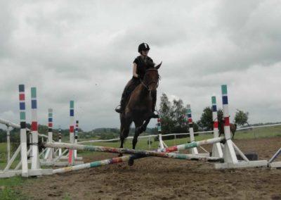 oboz-konie-2014-2-0042