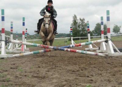 oboz-konie-2014-2-0043