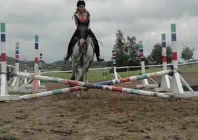 oboz-konie-2014-2-0045