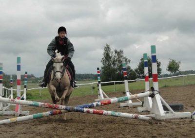 oboz-konie-2014-2-0046