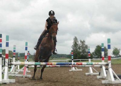 oboz-konie-2014-2-0048