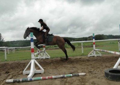 oboz-konie-2014-2-0053