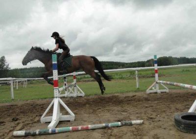 oboz-konie-2014-2-0054
