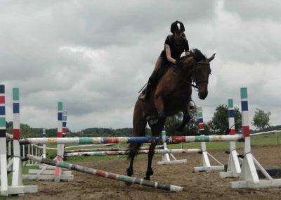 oboz-konie-2014-2-0057