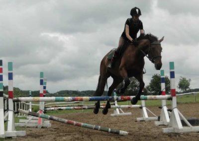 oboz-konie-2014-2-0058