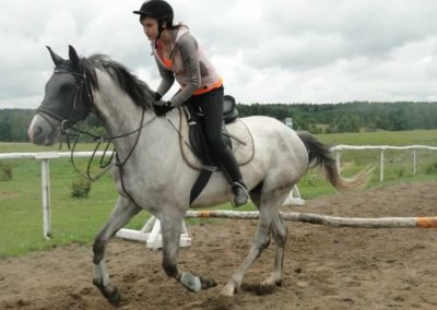 oboz-konie-2014-2-0062