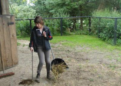 oboz-konie-2014-2-0067
